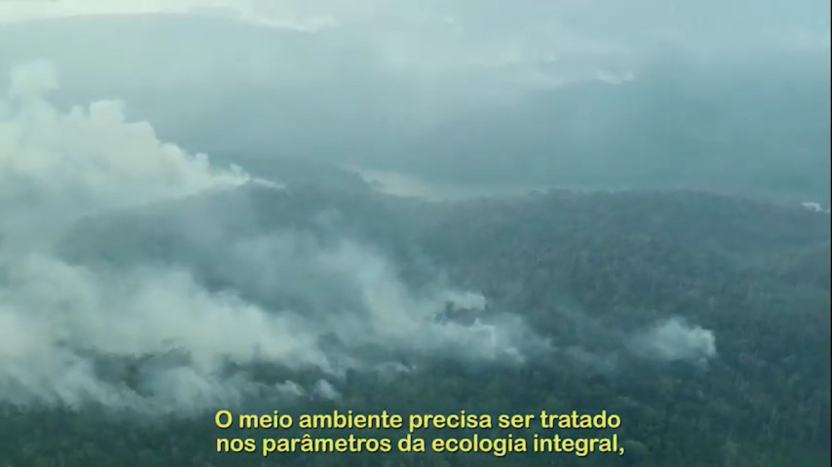 Levante a voz pela Amazónia!