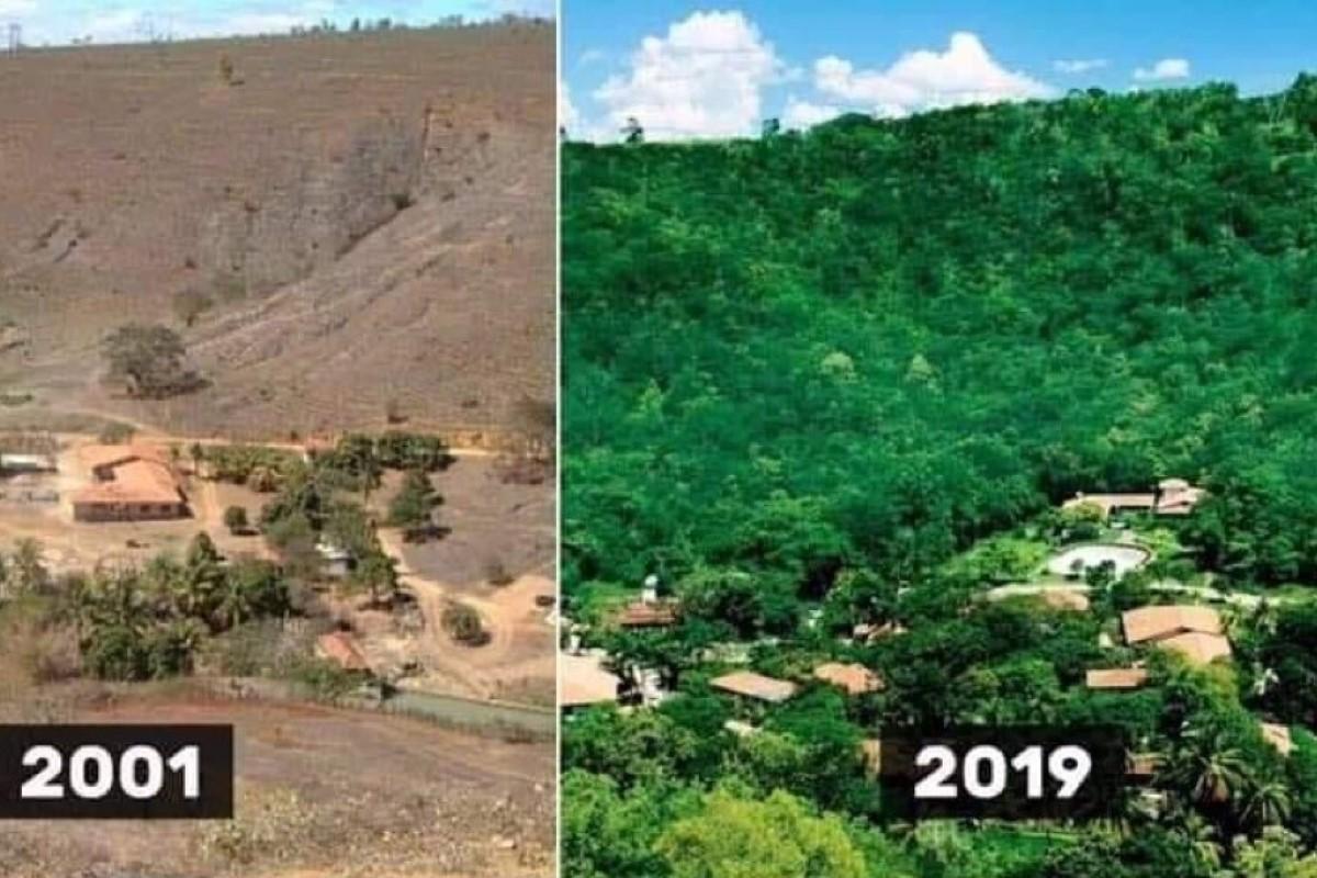 Florestação L.+S.Salgado reduz.